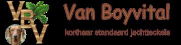 Vanboyvital logo